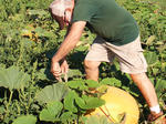 SLIDESHOW: Ready for the Autumn Harvest