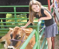 """<div class=""""source"""">Calen McKinney</div><div class=""""image-desc"""">Maelee Mattingly, 6, pets a cow at the petting zoo while posing for a photo for her parents.</div><div class=""""buy-pic""""><a href=""""http://web2.lcni5.com/cgi-bin/c2newbuyphoto.cgi?pub=085&orig=4-H%2BCow%2BPetting%2BZoo%2B1.jpg"""" target=""""_new"""">Buy this photo</a></div>"""