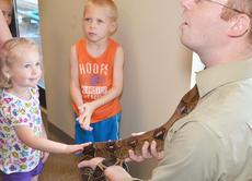 """<div class=""""source"""">Calen McKinney</div><div class=""""image-desc"""">Jaylee Vernon, 3, pets the boa constrictor, while her brother, Bryce, 4, waits his turn.</div><div class=""""buy-pic""""><a href=""""/photo_select/45409"""">Buy this photo</a></div>"""