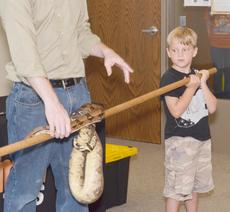 """<div class=""""source"""">Calen McKinney</div><div class=""""image-desc"""">Simon Leachman, 7, watches the boa constrictor as it moves down the pole on which it is coiled.</div><div class=""""buy-pic""""><a href=""""/photo_select/45416"""">Buy this photo</a></div>"""