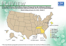 """<div class=""""source"""">Centers for Disease Control</div><div class=""""image-desc"""">Data from the Centers for Disease Control show that flu activity in Kentucky is widespread. Several local doctors say they are seeing many patients with positive flu tests experiencing muscle pain, fever and coughing. </div><div class=""""buy-pic""""></div>"""