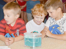 """<div class=""""source"""">Calen McKinney</div><div class=""""image-desc"""">Children take a close look at an ant farm, built to go along with the theme of this year's summer reading program, """"Dig into Reading.""""</div><div class=""""buy-pic""""><a href=""""/photo_select/45245"""">Buy this photo</a></div>"""