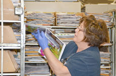 """<div class=""""source"""">Calen McKinney</div><div class=""""image-desc"""">Cherie Bleemel sorts through mail on Friday morning. Beginning in August, employees will only sort mail five days a week instead of six. The United States Postal Service announced last week that mail will no longer be delivered on Saturday.</div><div class=""""buy-pic""""><a href=""""/photo_select/42568"""">Buy this photo</a></div>"""