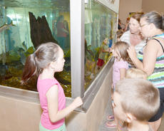 """<div class=""""source"""">Calen McKinney</div><div class=""""image-desc"""">Children and adults alike look at a large fish tank inside the visitor's center.</div><div class=""""buy-pic""""><a href=""""/photo_select/45261"""">Buy this photo</a></div>"""