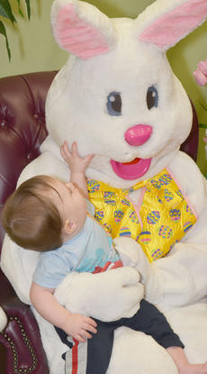 """<div class=""""source"""">Calen McKinney</div><div class=""""image-desc"""">Gabrial Carrender, 9 months, touches the Easter Bunny's face while sitting in his lap.</div><div class=""""buy-pic""""><a href=""""/photo_select/51225"""">Buy this photo</a></div>"""