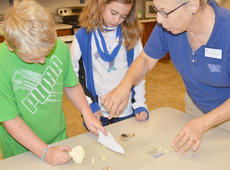 """<div class=""""source"""">Calen McKinney</div><div class=""""image-desc"""">Expanded Foods & Nutrition Program Assistant Angie Freeman, at right, shows Levi Dicken, at left, and Colleen Spencer the correct way to cut vegetables.</div><div class=""""buy-pic""""><a href=""""http://web2.lcni5.com/cgi-bin/c2newbuyphoto.cgi?pub=085&orig=chef_day_camp_7.jpg"""" target=""""_new"""">Buy this photo</a></div>"""