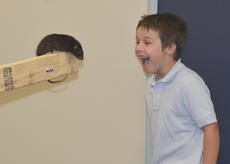 """<div class=""""source"""">Calen McKinney</div><div class=""""image-desc"""">Luke Durham, 6, of Campbellsville, laughs as this Norway rat named Hickory comes near him.</div><div class=""""buy-pic""""><a href=""""/photo_select/47824"""">Buy this photo</a></div>"""