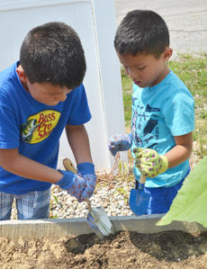 "<div class=""source"">Calen McKinney</div><div class=""image-desc"">Pedro Escamilla, 6, at left, and his brother, Marco Escamilla, 5, break up the dirt in one of the garden beds. They live in Indiana but were in Campbellsville last week visiting family.</div><div class=""buy-pic""><a href=""/photo_select/54237"">Buy this photo</a></div>"