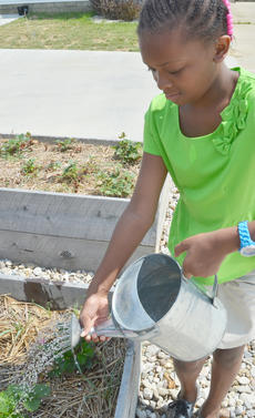 "<div class=""source"">Calen McKinney</div><div class=""image-desc"">Nadia Pratt, 10, of Campbellsville, waters some plants.</div><div class=""buy-pic""><a href=""/photo_select/54252"">Buy this photo</a></div>"