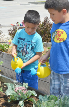 "<div class=""source"">Calen McKinney</div><div class=""image-desc"">Marco Escamilla, 5, at left, and his brother, Pedro Escamilla, 6, water one of the garden beds. They live in Indiana but were in Campbellsville last week visiting family.</div><div class=""buy-pic""><a href=""/photo_select/54245"">Buy this photo</a></div>"