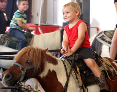 Roy Gibbins, 3, enjoys a pony ride at the Circus Pages 25th Anniversary show. Elephants, lions, horse, trick dogs and camels filled the National Guard Armory Tuesday. Bright lights, music and cotton candy made the experience extra special for all.  View more photos in a slideshow online.
