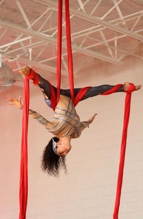 Spectators also enjoyed acrobatic aerial routines.