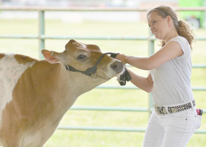 Korri Briggs of Campbellsville participates in the senior showmanship class.
