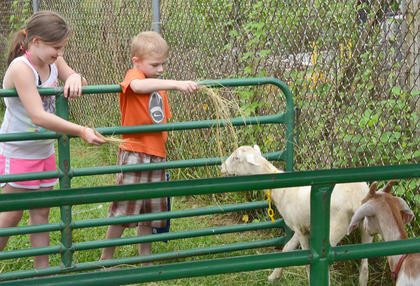 Summer Cox, 9, and Ethan Cox, 7, of Campbellsville, feed goats at the petting zoo.
