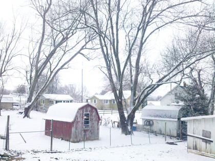 Amanda Caffee submitted this photo she took of her backyard.