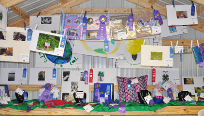 A collection of projects created by Taylor County 4-H members.