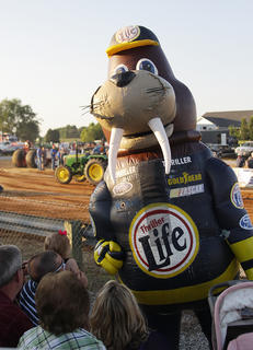 "Rusty Walrus, a character from the entertainment group ""Zooperstars,"" plays with children in the crowd at the truck pull."