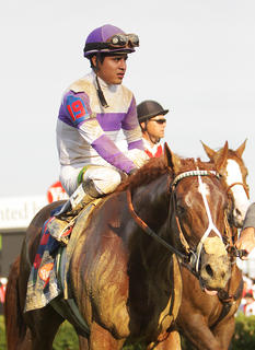 I'll Have Another, with jockey Mario Gutierrez up, walks through the winner's circle at Saturday's Kentucky Derby.