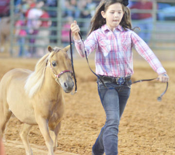 Jesi Stinson of Brooks competes in the miniature horse show.