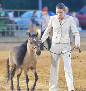 Samantha Clark of Campbellsville competes in the miniature horse show.