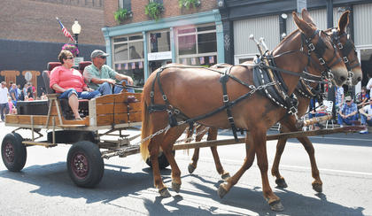 Residents show off their horses in the parade.