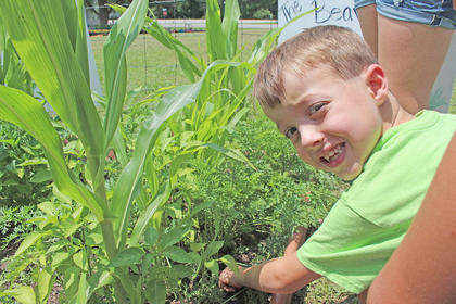 Noah Skaggs smiles while searching for a carrot at A Child's Workplace. A group from South Campbellsville Baptist Church volunteered their time to clean the area and start the garden.
