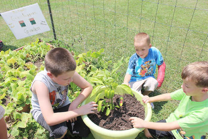 From left, Bailey Stearman, Caysen Tungate and Noah Skaggs check the progress of this bell pepper at A Child's Workplace.