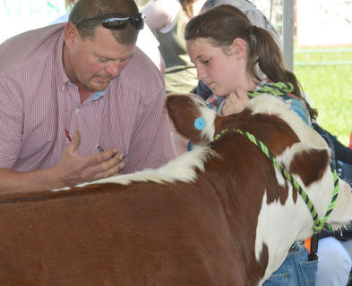 Chloe McCubbin receives advice from a judge at the fair's beef show.
