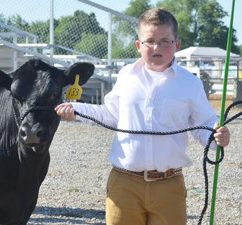 Clay Corbin shows cattle in the fair's beef show.