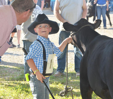 Jacob Johnson smiles at a judge during the fair's beef show.