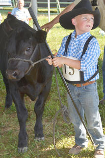 Jacob Johnson shows during the fair's beef show.
