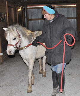 Marnie Braun leads 7-year-old Ethan, a purebred Welsh pony, around the barn at Meadowbrook Equestrian Center.