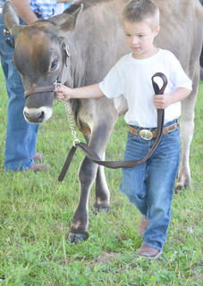 Ben Carrender of Campbellsville walks around the ring for a judge to get a good look at his dairy cow.