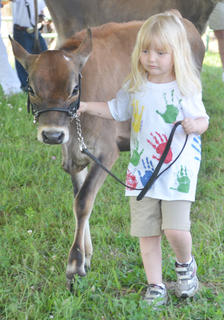 Ellis Crowshaw of Boyle County participates in the novice showmanship class.