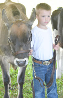 Ben Carrender of Campbellsville stands as his entry is judged in the dairy contest.