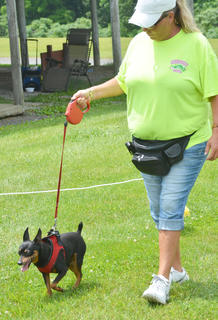 Bridgett Page of Campbellsville walks her dog Spike around the track at the Taylor County SPCA's annual dog show on Sunday.