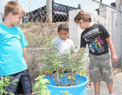 From left, Jonathan Vaughn, Brayden Fitzgerald and Ashton Moss wish this tomato would ripen a little faster so they can use it on the pizzas they often make at Porter's Playhouse.