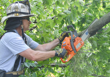 Campbellsville Fire & Rescue Chief Kyle Smith cuts a tree limb with a chainsaw. Fire & Rescue personnel spent several hours Thursday morning working to remove several trees that blocked the entrance to the Forest Hills Subdivision.