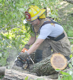 Campbellsville Fire & Rescue firefighter Alex Johnson uses a chainsaw to cut a tree limb. Fire & Rescue personnel spent several hours Thursday morning working to remove several trees that blocked the entrance to the Forest Hills Subdivision.