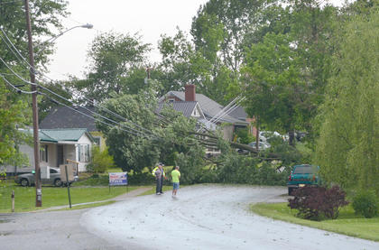 Many large trees, like this one on Meader Street, fell during Thursday's storm. Campbellsville Police officers and other officials were on the scene helping with cleanup and diverting traffic.