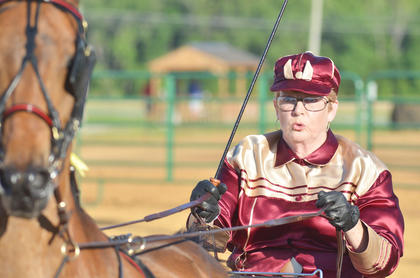 Teresa Morgan of Glendale participates in the pleasure pony class during this year's Tommie Johns Memorial Championship Horse show at the fair on Saturday.