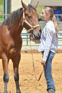 Kelsey Woodrum of Campbellsville smiles as her horse Lil' Boy is judged as she participates in the youth horse show at the fair on Saturday.
