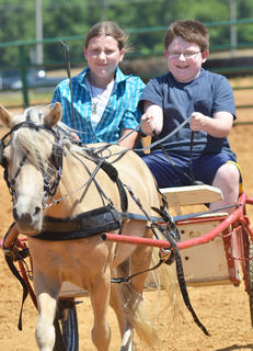 Grace Malone, at left, and Cade Malone, of Campbellsville drive Si in the wagon class at the fair's youth horse show on Saturday.