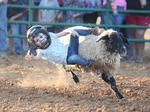 SLIDESHOW: Taylor County Fair 2018