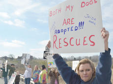 "<div class=""source"">Calen McKinney</div><div class=""image-desc"">About 50 protestors rallied at the Taylor County Animal Shelter on Saturday in the second rally to save the shelter. Sandra Benton of Campbellsville was one of the 50.</div><div class=""buy-pic""><a href=""http://web2.lcni5.com/cgi-bin/c2newbuyphoto.cgi?pub=085&orig=Shelter%2BProtest%2B%25232%2B14.jpg"" target=""_new"">Buy this photo</a></div>"