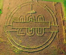 """<div class=""""source"""">Jeff Moreland</div><div class=""""image-desc"""">The Haunted Corn Maze at Green River Lake State Park is shaped into the Campbellsville Bicentennial Logo. </div><div class=""""buy-pic""""><a href=""""/photo_select/66195"""">Buy this photo</a></div>"""