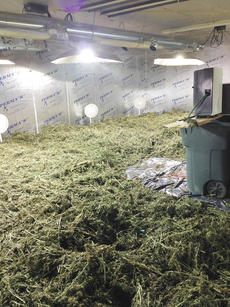 "<div class=""source"">CKNJ File</div><div class=""image-desc"">Deputies uncovered more than 1,400 pounds of marijuana inside a storage building on Donna Drive off KY 55 in Oct. 2013. Five individuals were recently arrested and face drug trafficking charges in connection with the discovery. </div><div class=""buy-pic""><a href=""/photo_select/66524"">Buy this photo</a></div>"