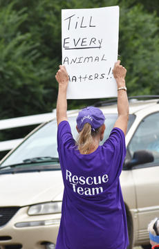 """<div class=""""source"""">Photo/Zac Oakes</div><div class=""""image-desc"""">Sandra Benton holds a sign at Saturday's protest.</div><div class=""""buy-pic""""><a href=""""/photo_select/67643"""">Buy this photo</a></div>"""
