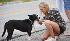 """<div class=""""source"""">Photo/Zac Oakes</div><div class=""""image-desc"""">Rachel Shoemaker gives her dog, Sugs, some water at the protest Saturday. A few people brought their dogs to the protest.</div><div class=""""buy-pic""""><a href=""""/photo_select/67642"""">Buy this photo</a></div>"""