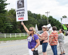 """<div class=""""source"""">Photo/Zac Oakes</div><div class=""""image-desc"""">Campbellsville resident Shelly Rose holds a sign at the protest Saturday afternoon.</div><div class=""""buy-pic""""><a href=""""/photo_select/67638"""">Buy this photo</a></div>"""